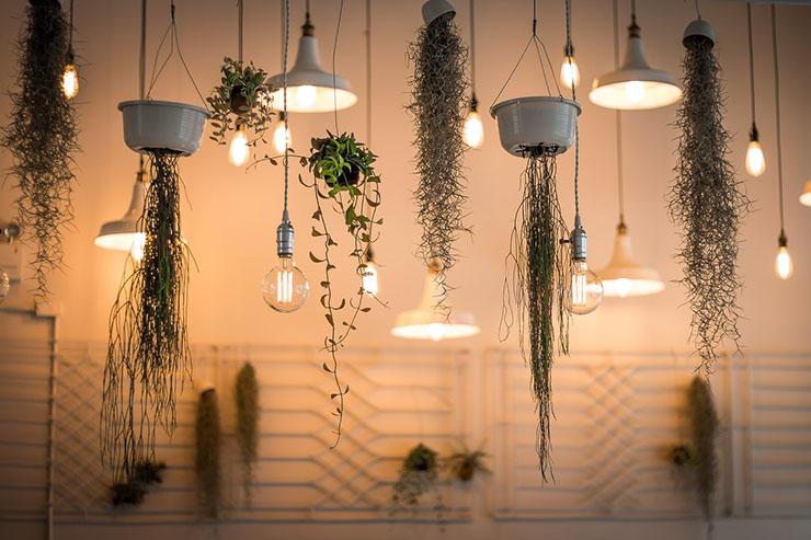 hanglampen-hangplanten