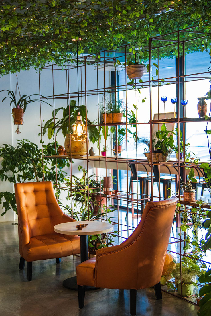 open-kast-planten